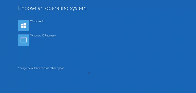 select Windows 10 Recovery boot option