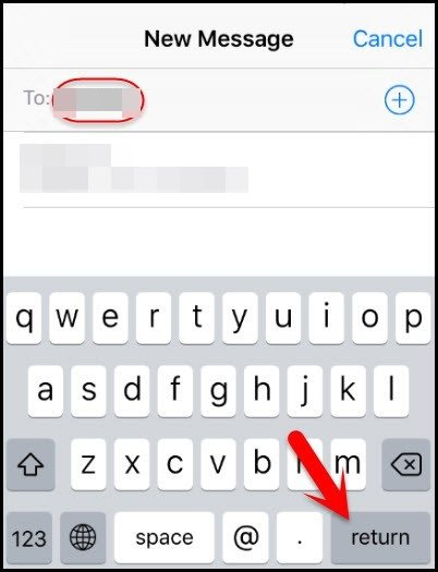select the Return option to unlock iphone passcode