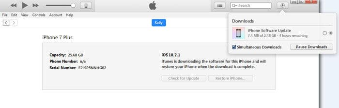 wait until iTunes restores iPhone